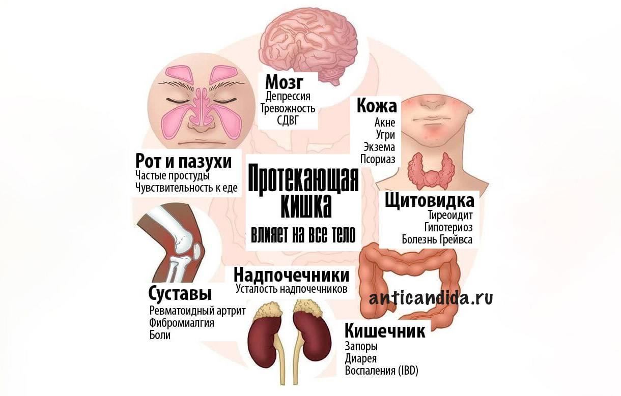 гапс-диета-антикандида-дырявый-кишечник